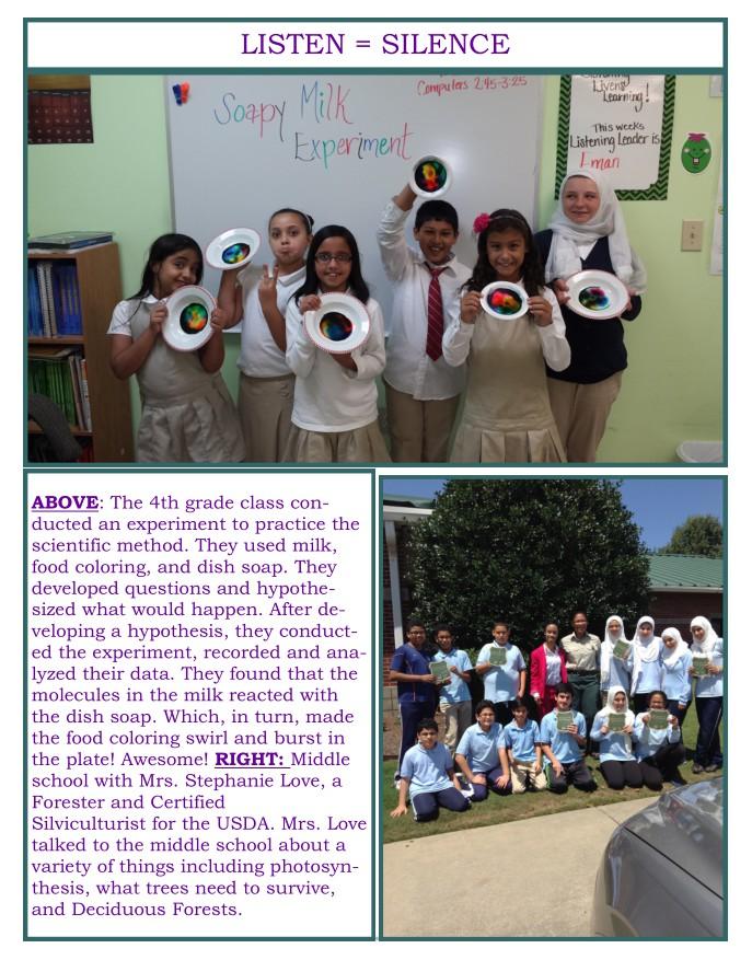 Newsletter p3